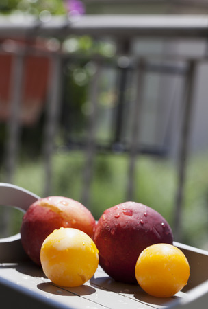 Fruits over a wooden tray, on a balcony