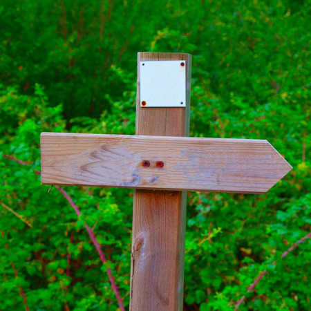 cartel: Wooden sign with directional arrow in the wood Stock Photo