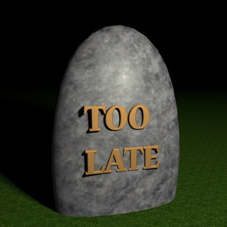 Stone with words Too late, 3d render photo