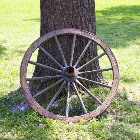 old wood farm wagon: Barrow wheel leaning to tree, square image