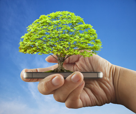 Tree growing over smartphone in male hand, blue sky, horizontal image Stockfoto