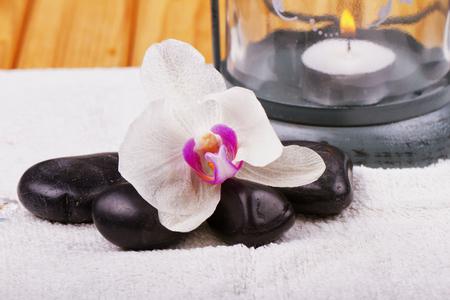 lit image: Orchid and stones, lit lantern on the back, horizontal image
