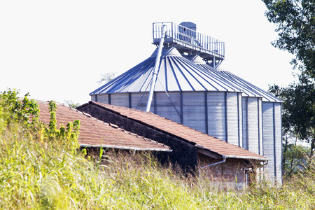 agriculture industrial: Industrial silos for agriculture, between grass and trees, horizontal image