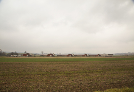 Agricultural establishments in the fields, horizontal image