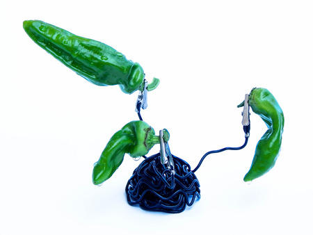 incurred: Three green peppers incurred as a vegetable sculpture.