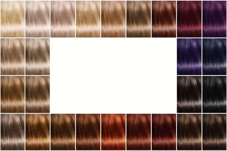 Color palette of hair dyes. A palette of hair colors with a wide selection of samples. There is an empty space in the center. A set of hair dyes.