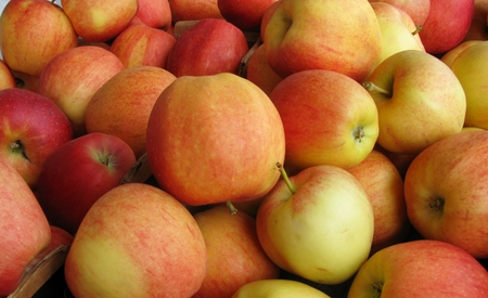 Pile of Gala apples in a market stall Stock Photo - 33033307