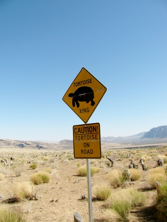 xing: Desert Tortoise caution road sign in the desert.