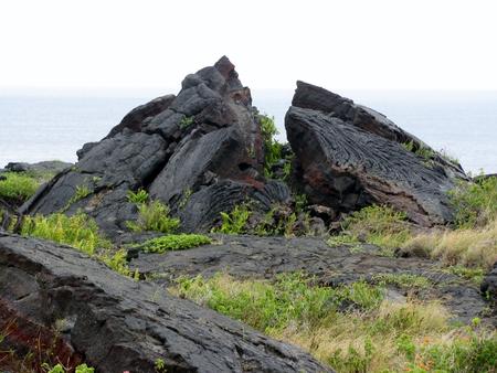 lanzarote: Cold volcanic flow in detail. Hawaii