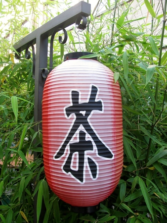 Asian red paper lantern against green bamboo shoots