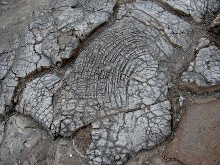 Lava rock from the Kilauea Volcano. Big Island, Hawaii Banco de Imagens