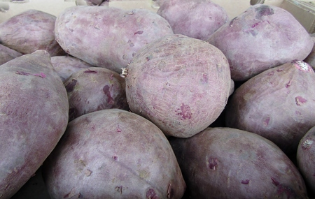 Pile of purple sweet potatoes