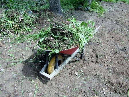 Small garden cart full of weeds