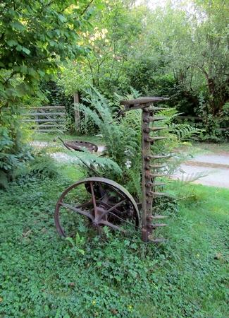 Vintage decorative old iron harrow and large fern
