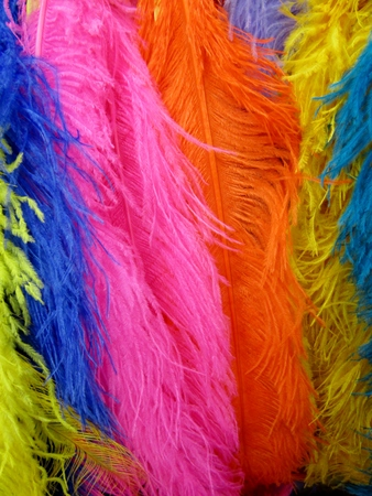 Colorful feathers,  blue, pink, orange, yellow
