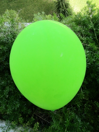 Green balloon lying on the lawn.