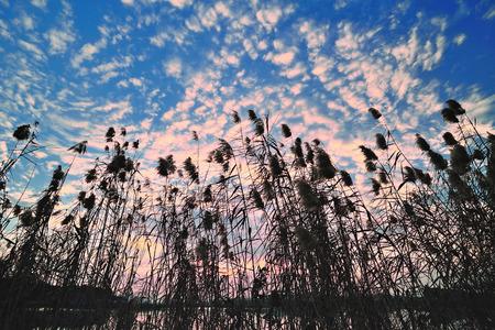 ance: Ance, prima del tramonto e le nuvole Archivio Fotografico