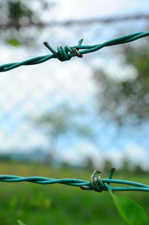 admittance: Fence close-up