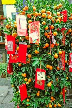 best travel destinations: Lucky red envelopes orange tree