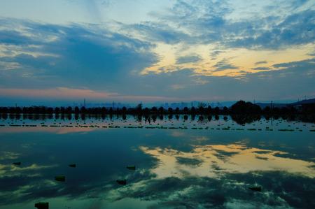 freshwater pearl: Pearl Lake sunset Stock Photo