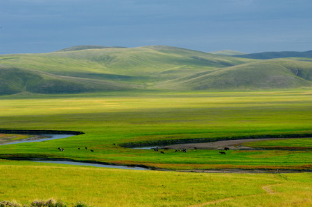 mori: Mori gelei river scenery
