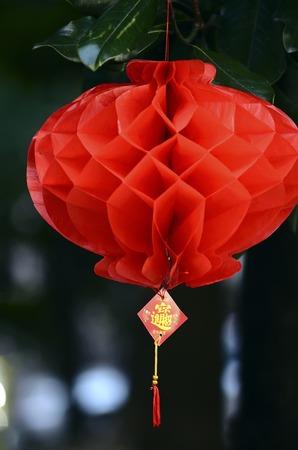 thriving: red lanterns