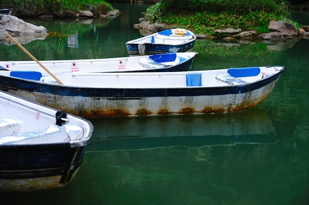 fibreglass: Boats in the water