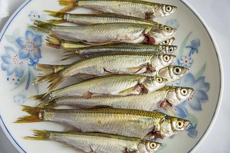 fishy: Freshwater fish