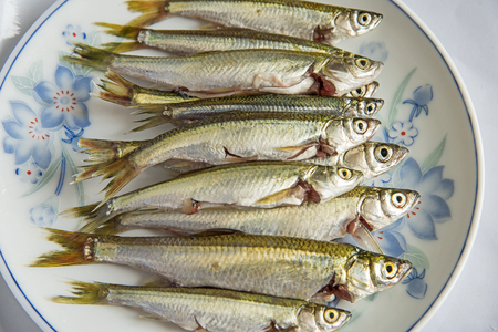 freshwater fish: Freshwater fish