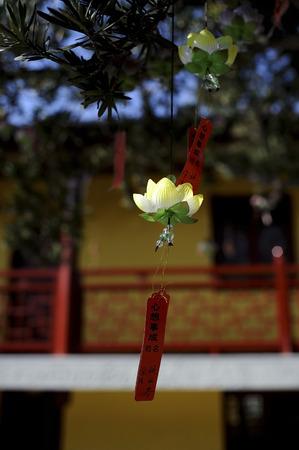 lotus lantern: lantern shaped like a lotus flower