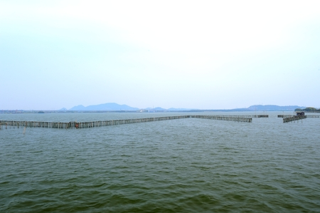 Fish fence of ancient typhoon shelter in Shaoxing Stock fotó