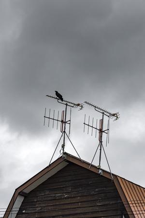 Ravens on a Japanese farm roof Stock Photo