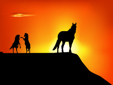 wild prairie: silhouette of wild horses in the sunset