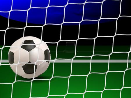 soccer goal: soccer ball on the empty soccer field