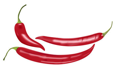 spicy peppers: photo realistic chili peppers on white background Illustration