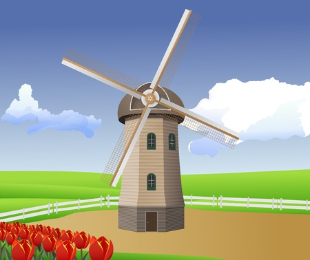 holland windmill: vector cartoon illustration of landscape with windmill and tulips