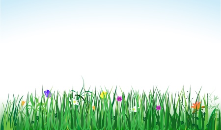 vector banner with green grass and colorful flowers Stock Vector - 12760300