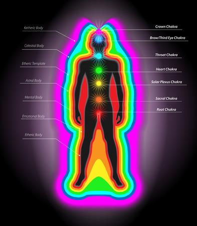 Illustration of Human Auras and Chakras 일러스트
