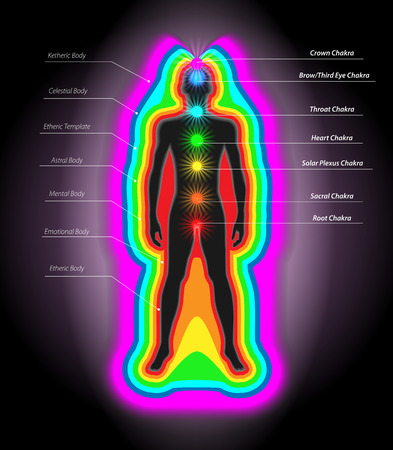 Illustration of Human Auras and Chakras Vector