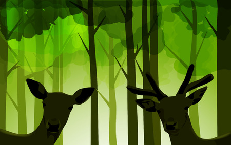 roe deer: Vector Deers in Bright Green Forest, Eps 10, Gradient Mesh and Transparency Used