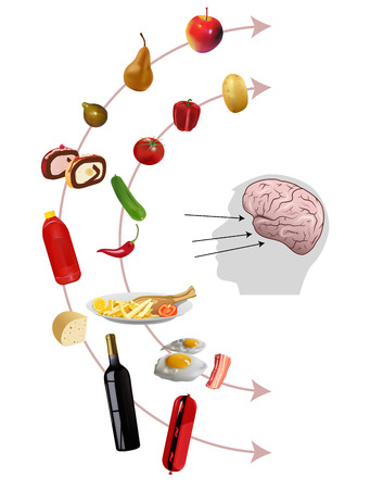 neuroscience: Vector Neurogastronomy Concept on White Background, Eps10, Gradient Mesh and Transparency Used