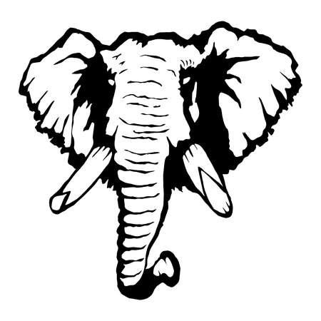 Isolated illustration of an elephant's head