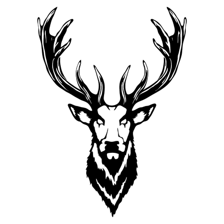 Isolated illustration of a deer head