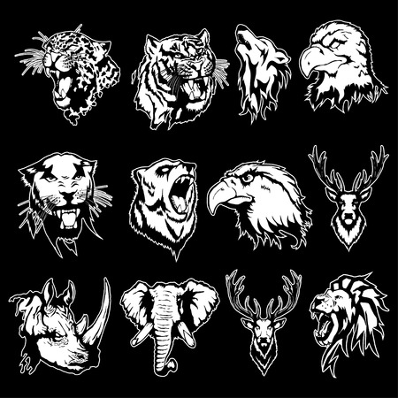 Isolated illustration of different animal heads. Illustration