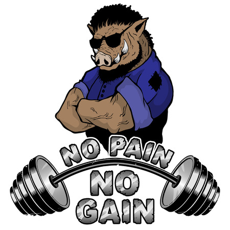 Vector illustration barbell and strong wild boar.