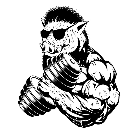 Vector illustration of a strong ferocious boar bodybuilder shows a large bicep