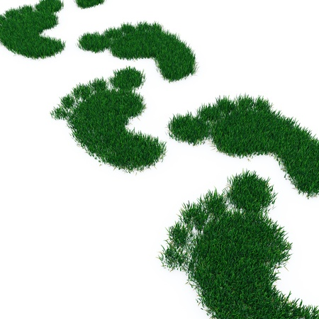 fuga: Footprint from grass isolated on white.