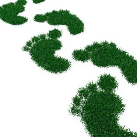huir: Huella de hierba aislado en blanco. Foto de archivo