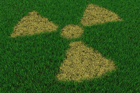 Radiation symbol from thatch on green grass. 3D render image. photo
