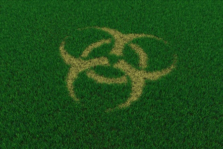 Biohazard symbol from thatch on green grass. 3D render image. photo